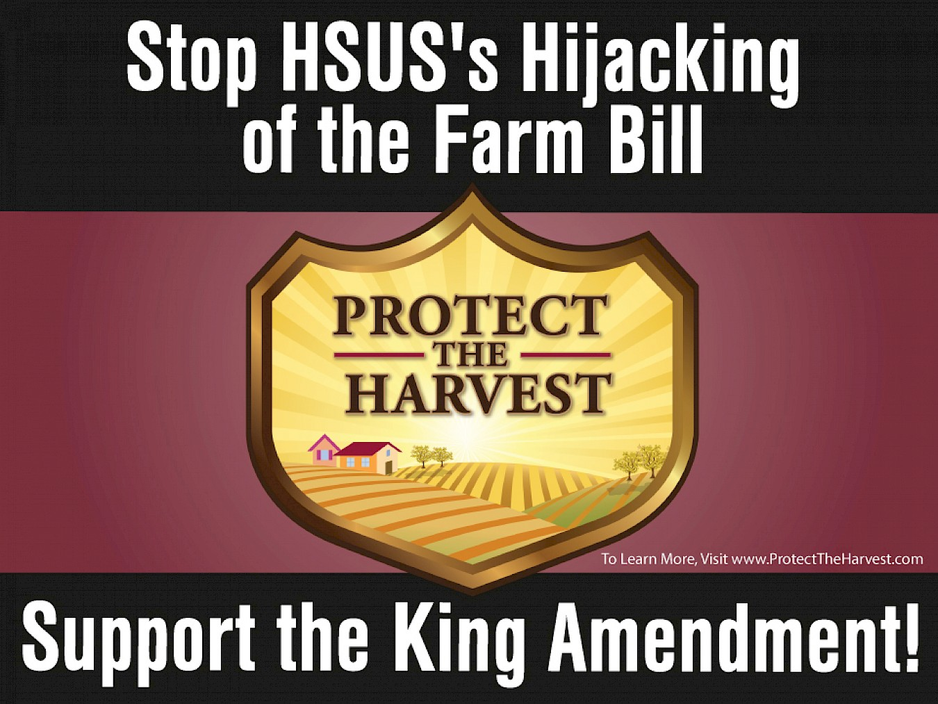Call to Action: Support the King Amendment