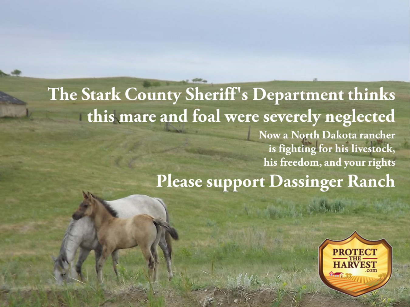 North Dakota Rancher – Fighting For His Ranch and Your Rights