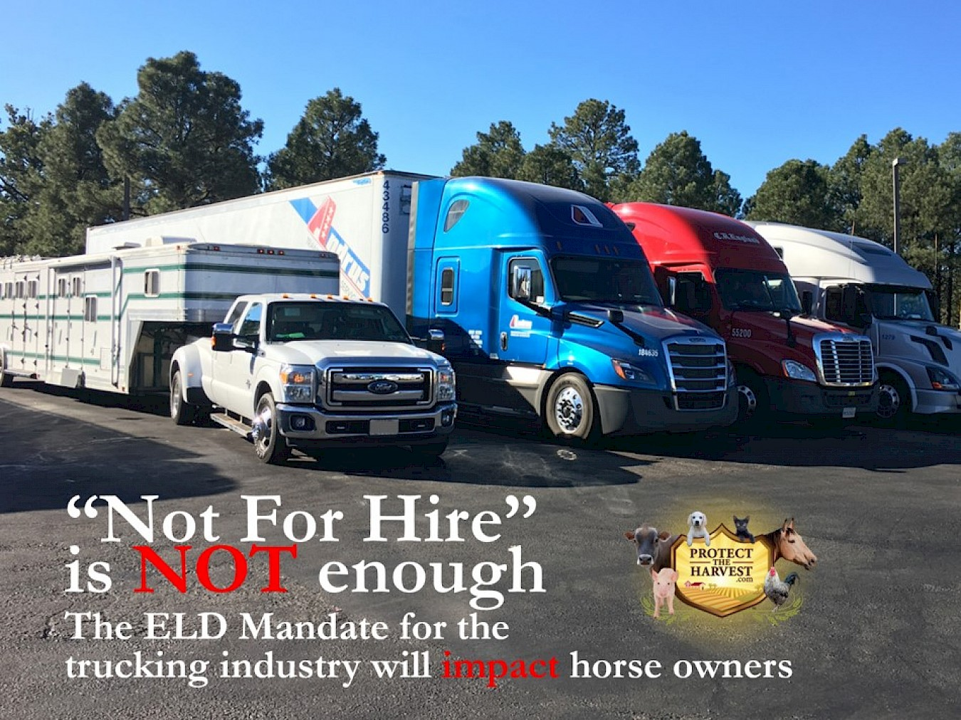 How the ELD Mandate Will Impact the Horse Industry