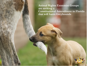 PTH - Threats to Animal Ownership