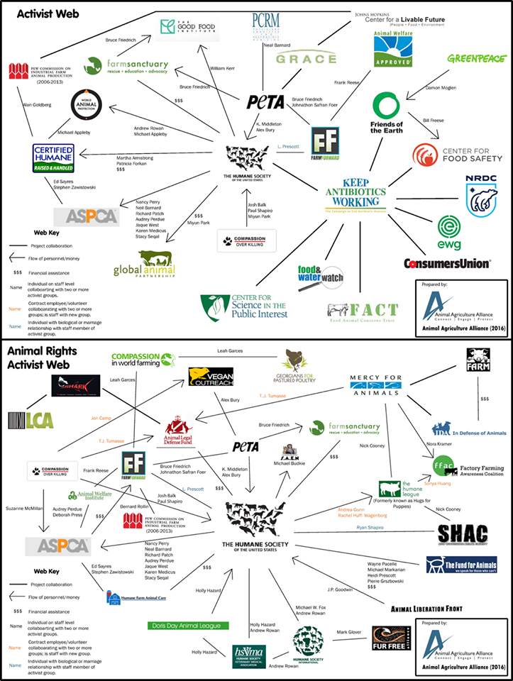 Animal Rights and NGO Activist Web_Animal Agriculture Alliance
