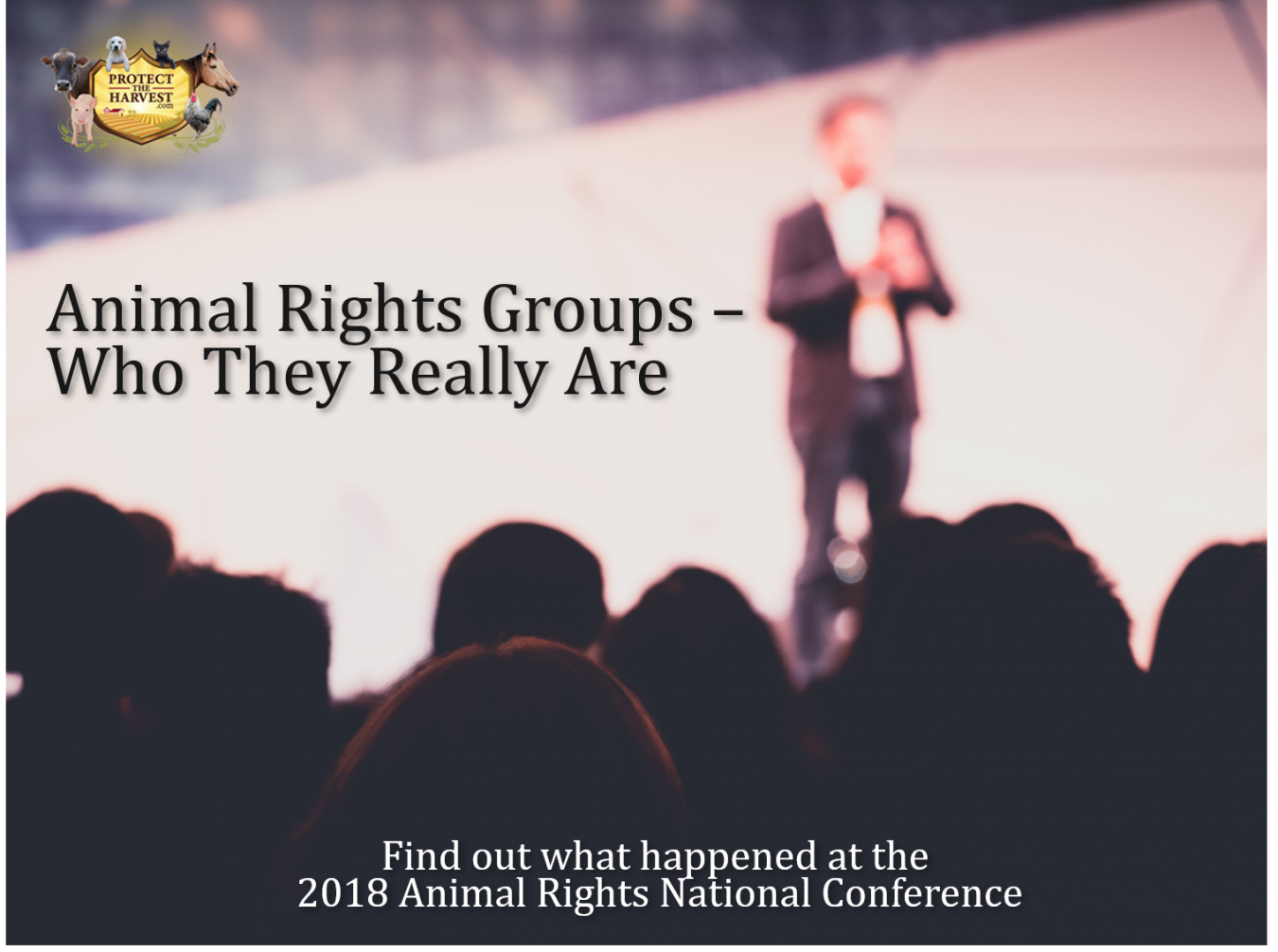 Animal Rights Groups – Who They Really Are