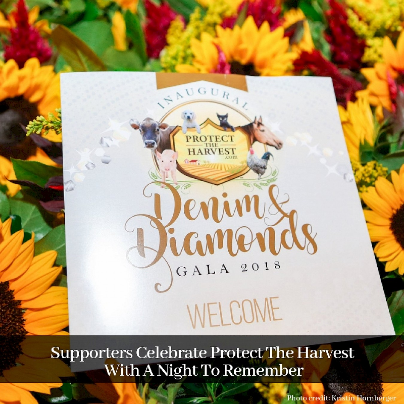 Supporters Celebrate Protect The Harvest with a Night to Remember