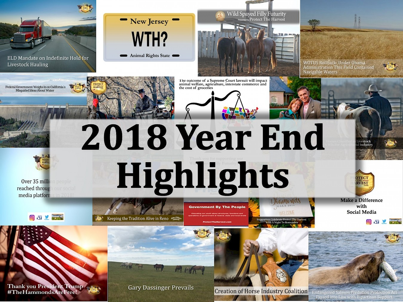 2018 Year End Highlights
