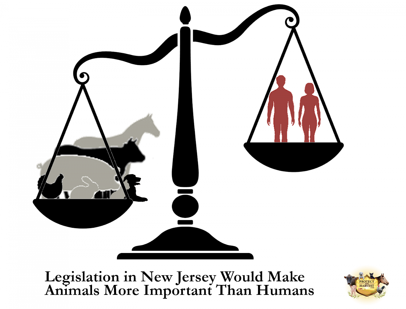 Legislation in New Jersey Would Make Animals More Important Than Humans