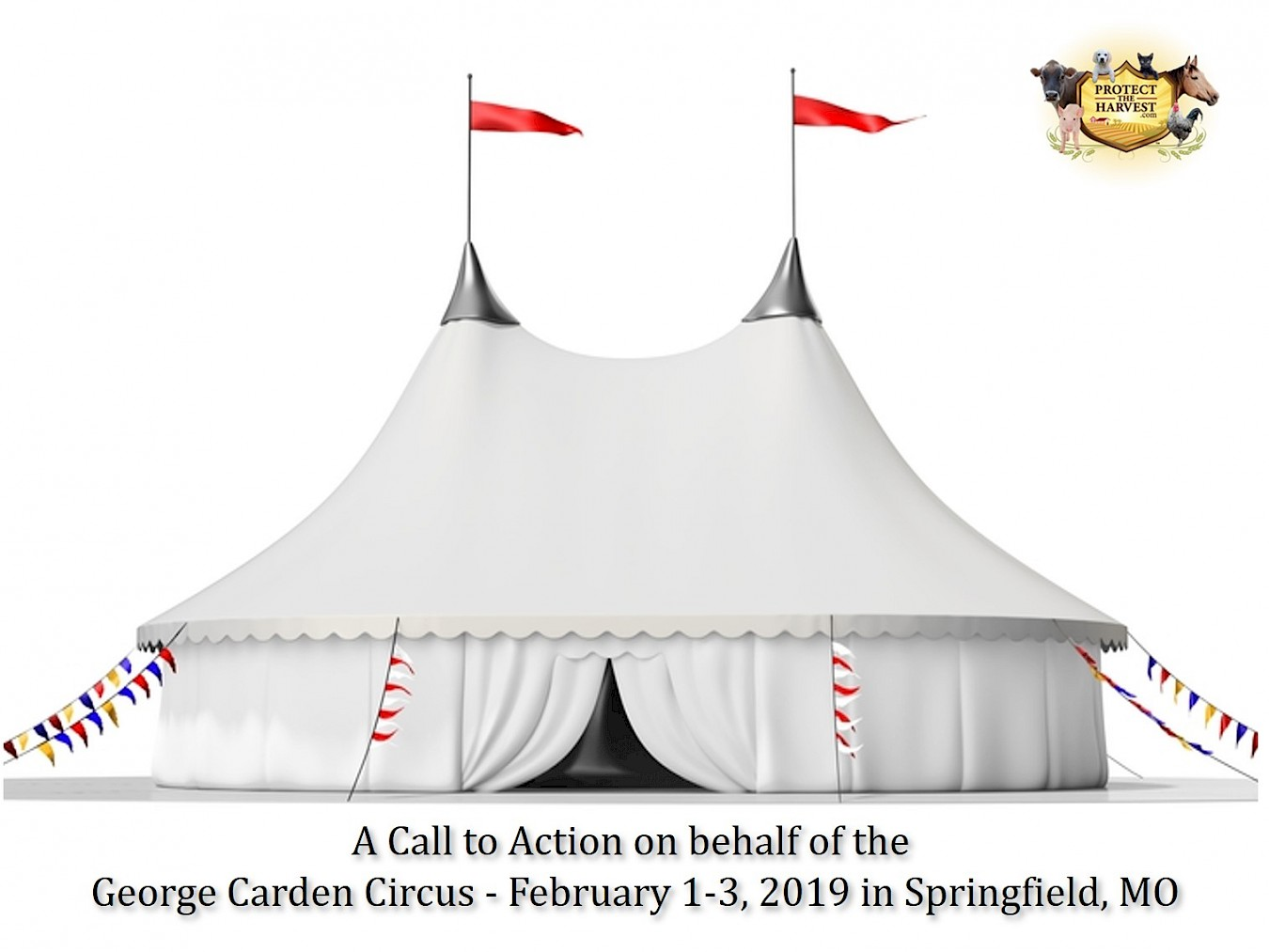 A Call to Action on Behalf of the George Carden Circus in Missouri