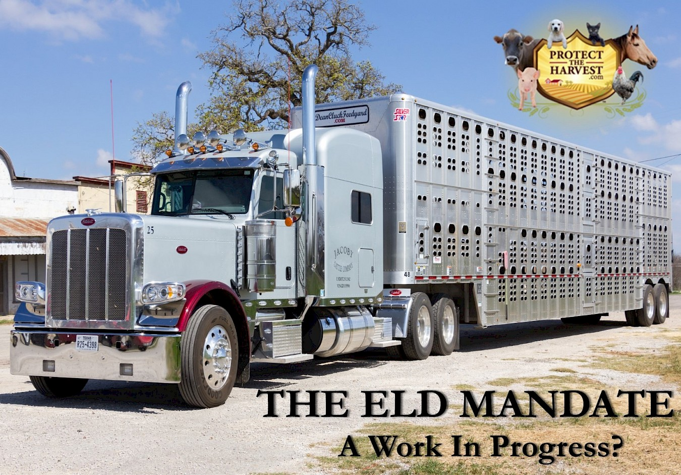 The ELD Mandate - A Work In Progress?