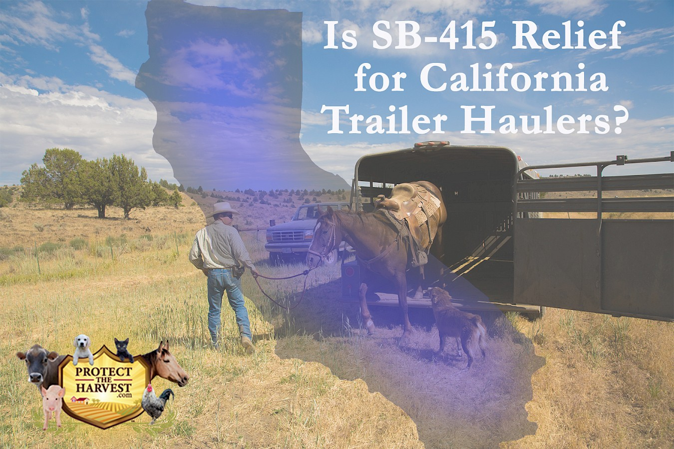 Relief for California livestock, horse, boat, ATV, and other trailer haulers.