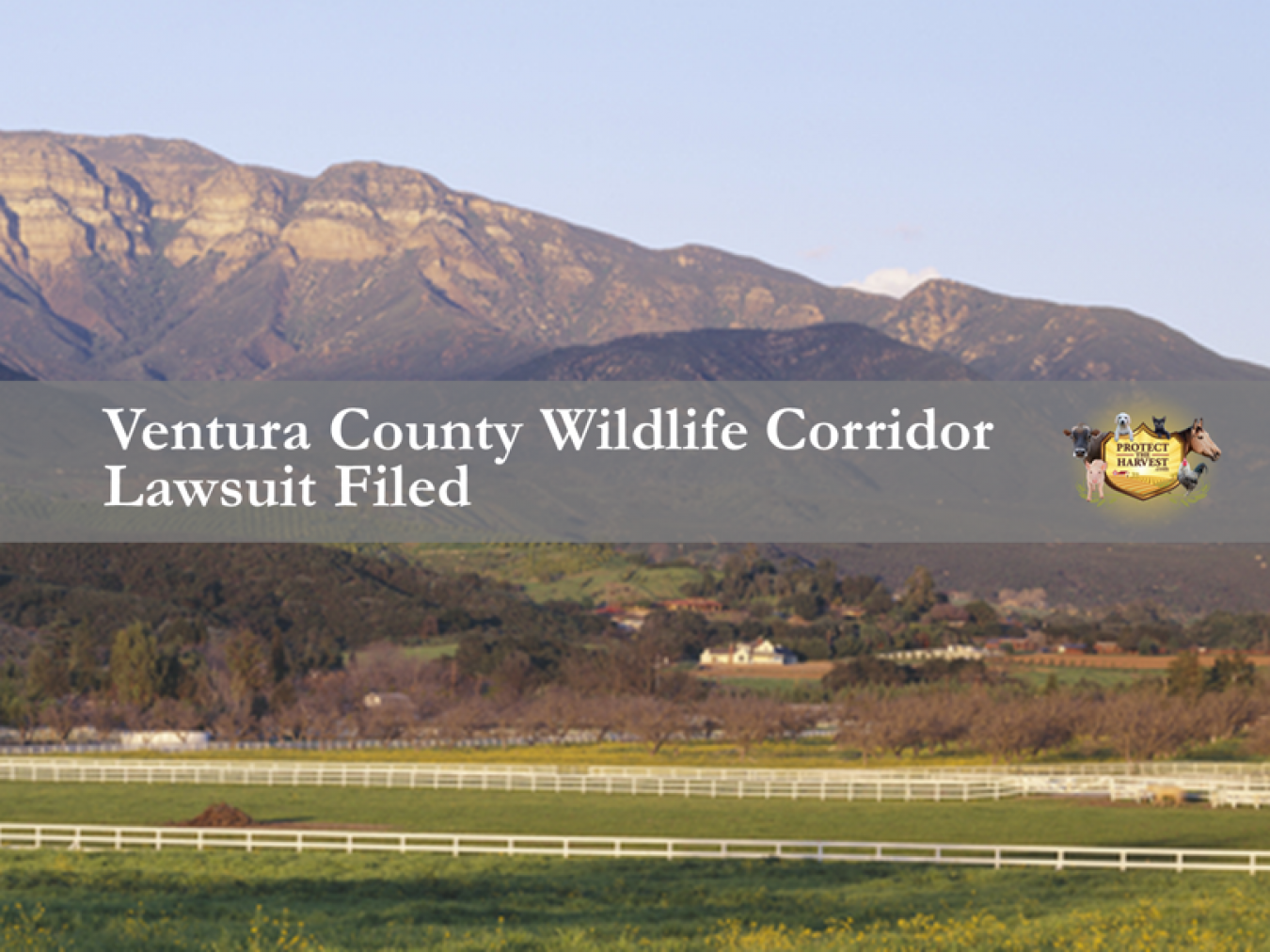 Ventura County Wildlife Corridor Update - Lawsuit Filed