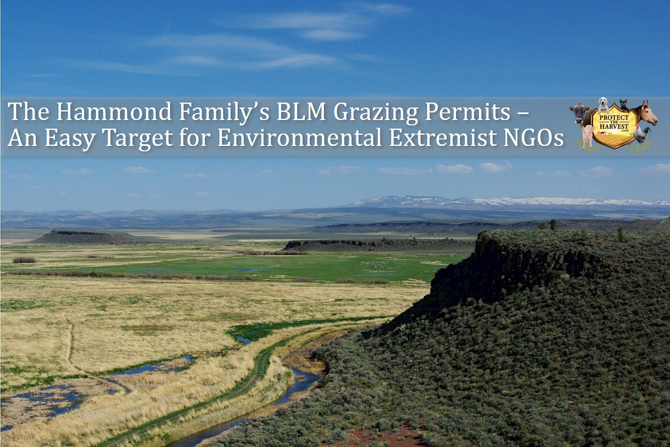 The Hammond Family's BLM Grazing Permits-An Easy Target for Environmental Extremist NGOs