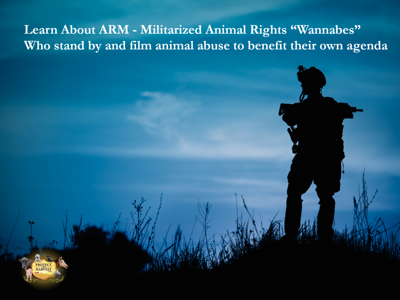 What You Need to Know - Animal Rights Organizations - Animal Recovery Mission (ARM)