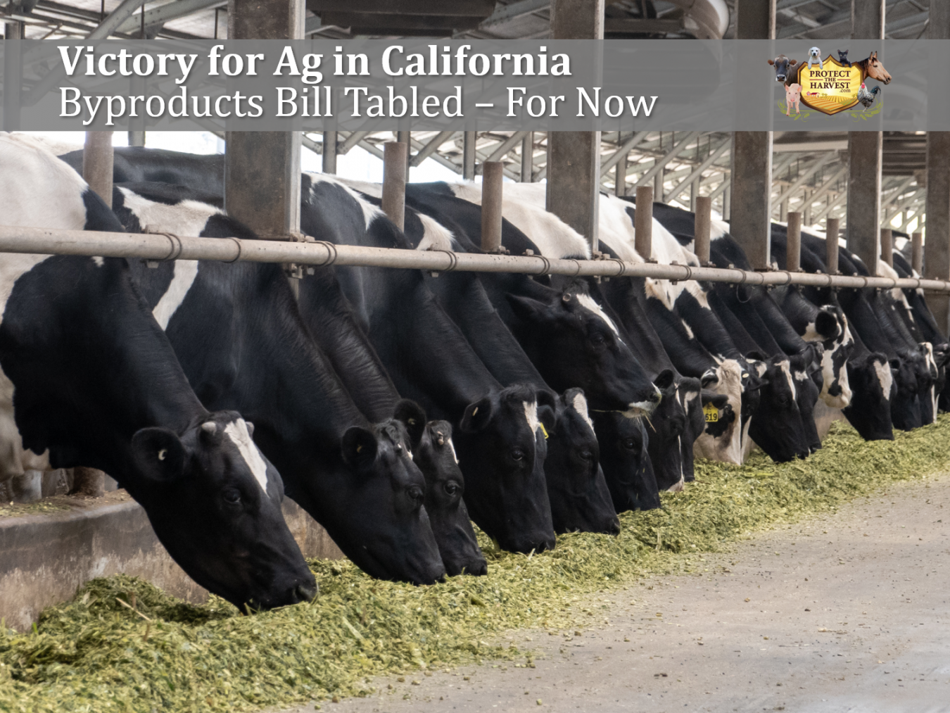 Victory for Ag in California Byproducts Bill Tabled – For Now