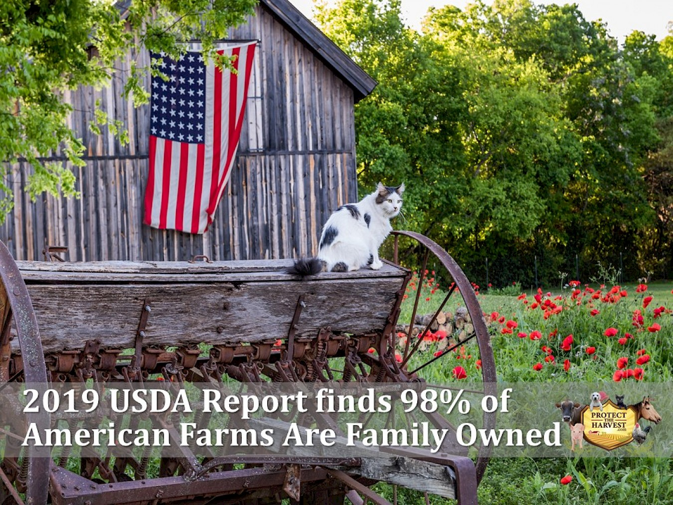 98% of American Farms are Family Owned