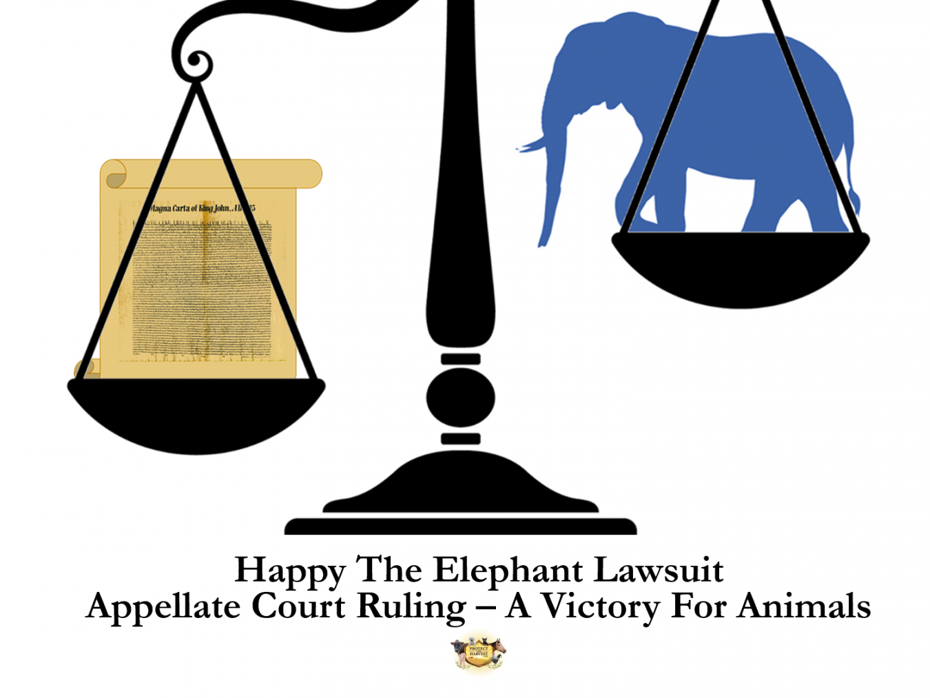 Habeas Corpus - Appellate Decision - A Victory for Animals