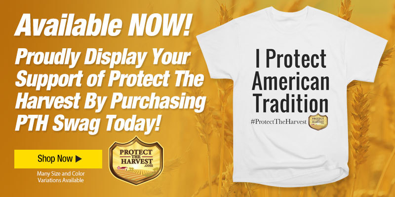 T-Shirt - I Protect American Tradition